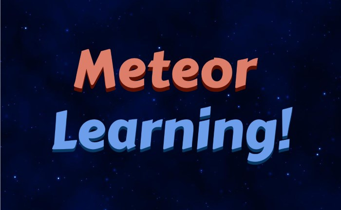 6-meteor-learning